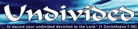 Undivided - the celibacy newsletter - banner